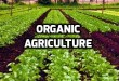 Organic agri