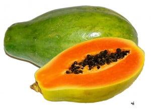 papaya2d