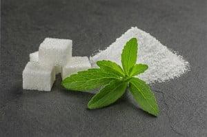 stevia-plant
