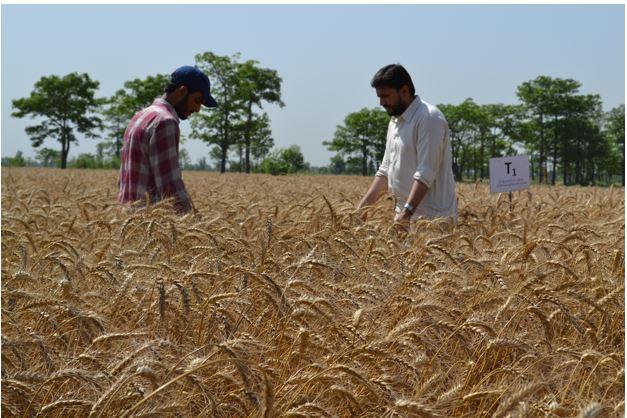 agronomist role-3