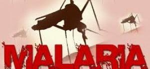 Malaria4-1728x800_c