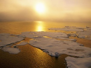 global-warming1-300x225
