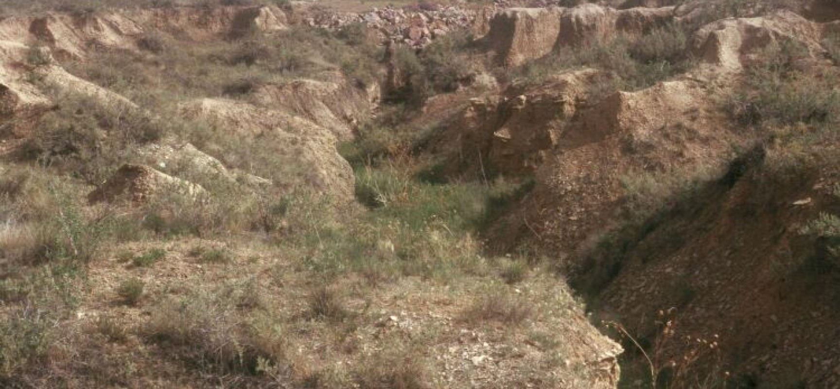 The beast of soil erosion agrihunt for Soil articles