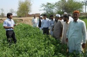Small-Pakistan-farmers_02