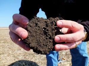 healthy-soil1