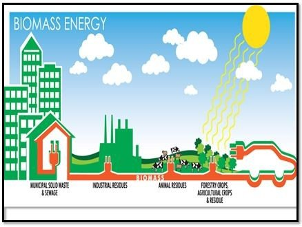 Electricity From Biomass Energy