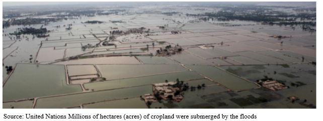 impact of floods - 7