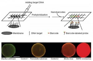 nanobarcode